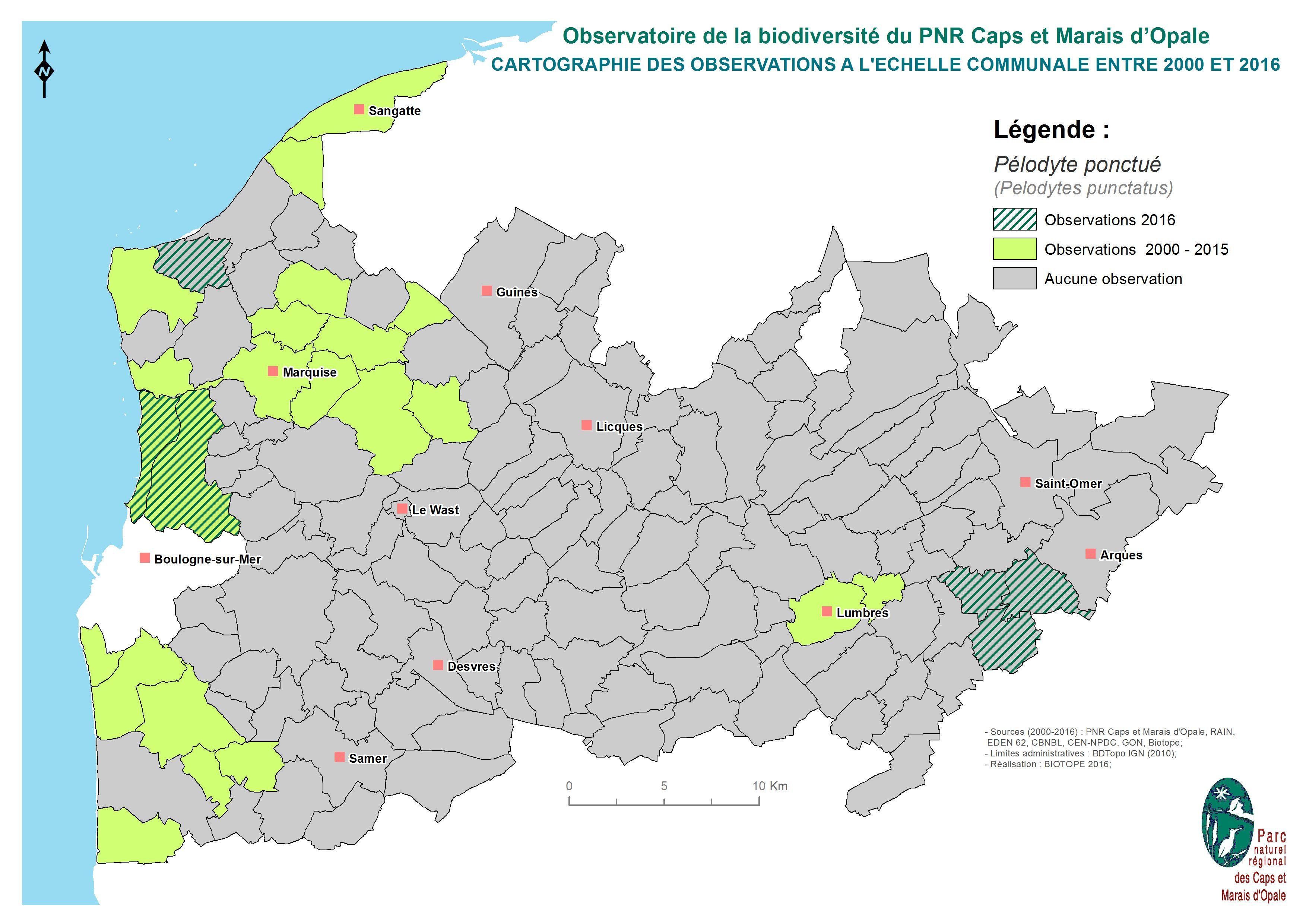 Localisation des observations du Pélodyte ponctué sur le territoire du Parc
